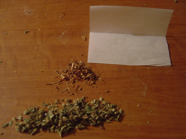 Cannabis essay