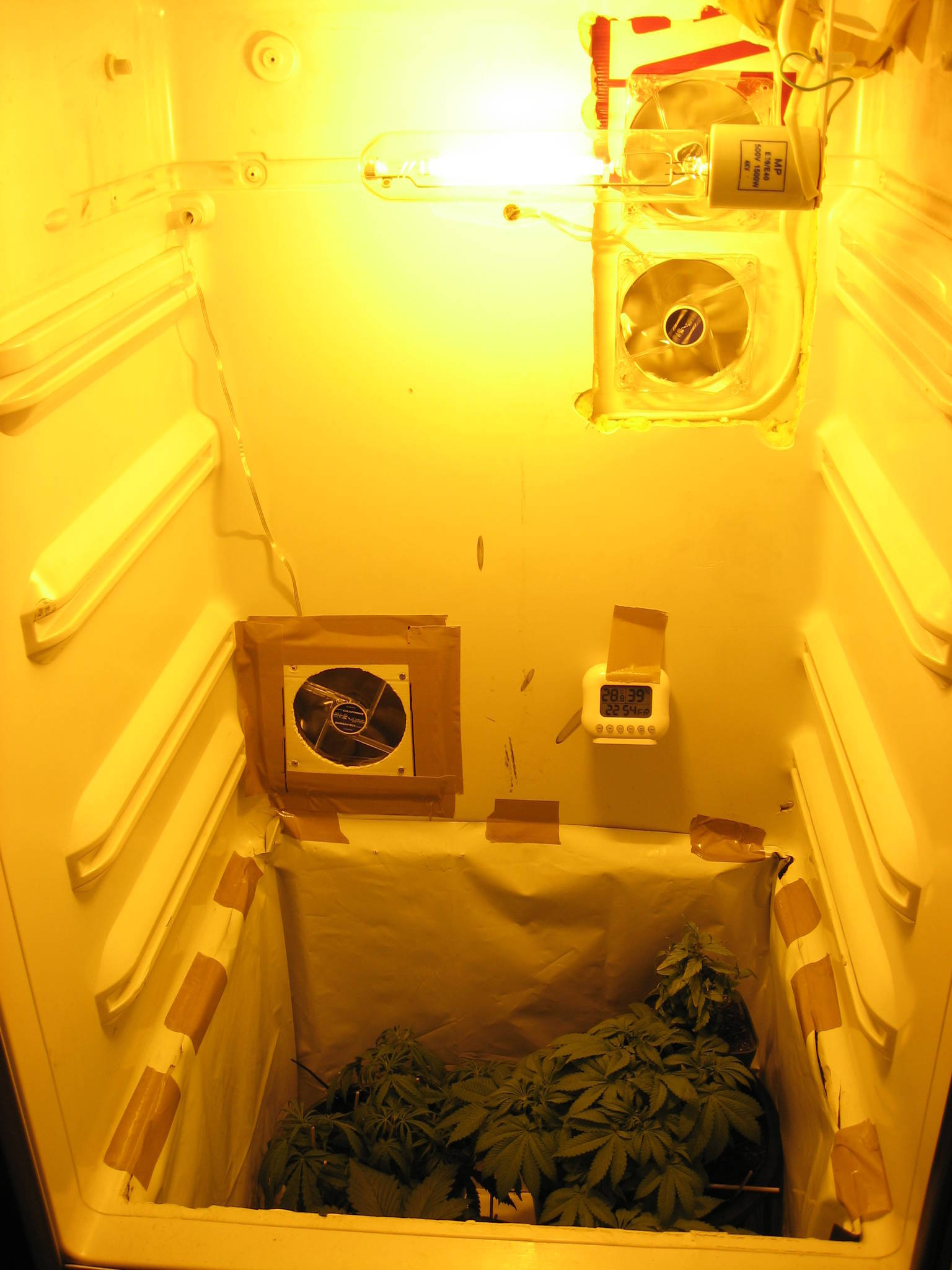 Small Hydro Grow In Fridge Hydroponic Amp Agroponics
