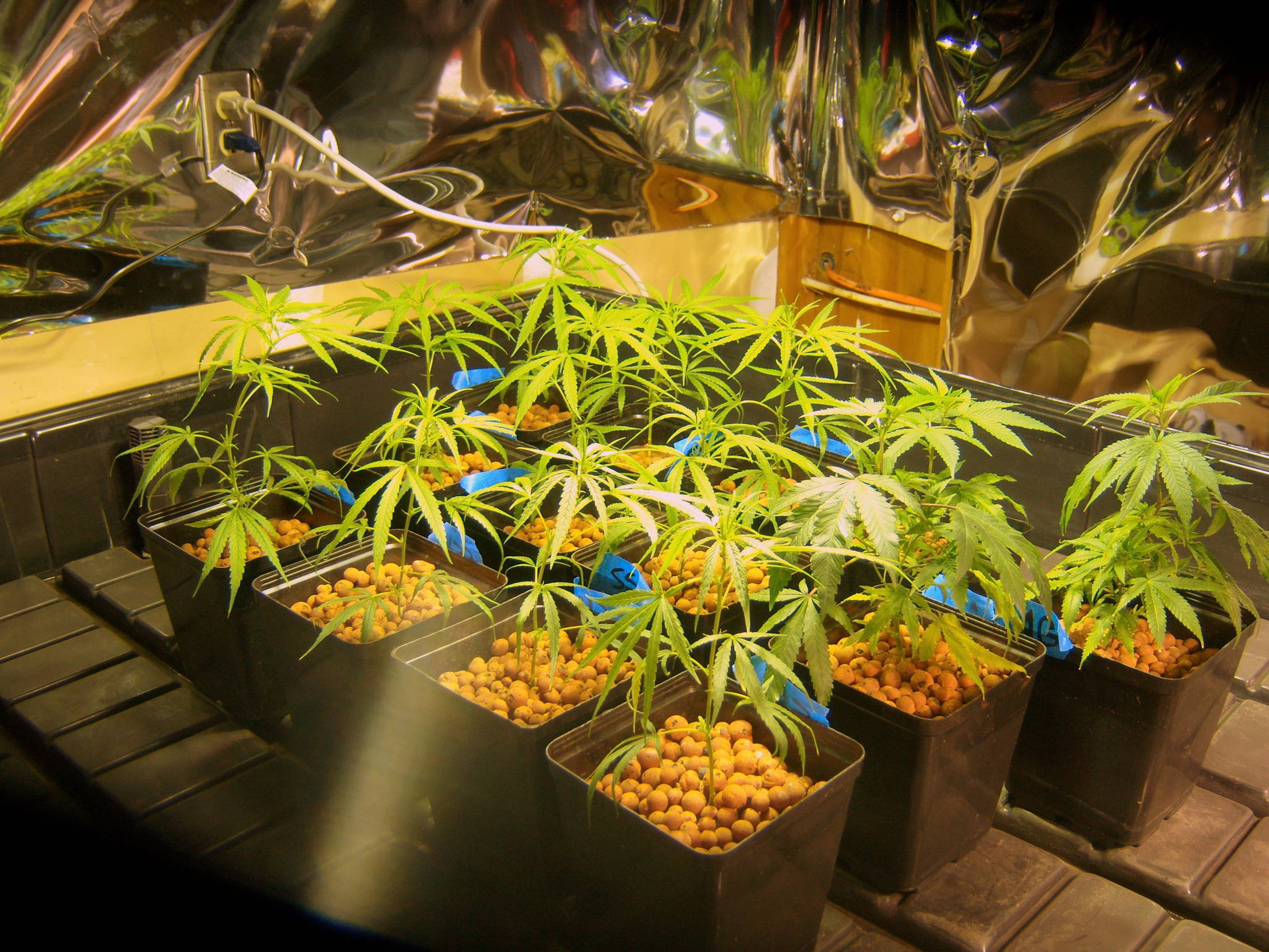 Grow Room Light Hangers