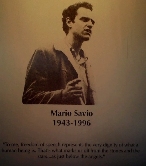 Image result for mario savio 1990
